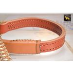 Golden Luxury Short Leather Leash 2