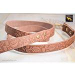 Autumn Leather Leash 2