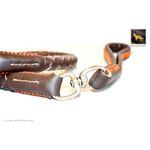 Freedom Braided Leather Leash 4