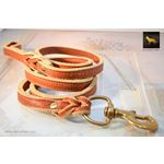 Sunset Thick Leather Leash