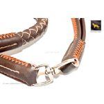 Freedom Braided Leather Leash 2
