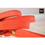 Love Knot II Braid Red Leather Leash 2