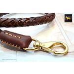 Statement Dark Brown Braided Leather Leash