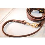 Productive Leather Leash 2