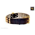 Gladiator V Black Studded Leather Collar 2