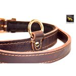 Monster II Leather Collar 2