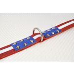 LPNY USA Pride Leather Dog Collar2