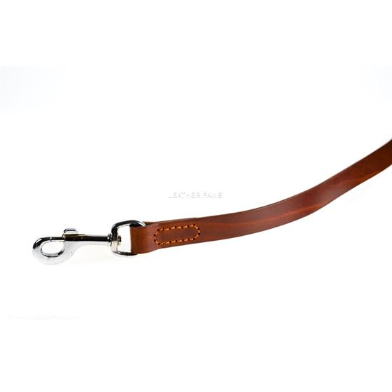 Red Mahogany Leather Leash clasp