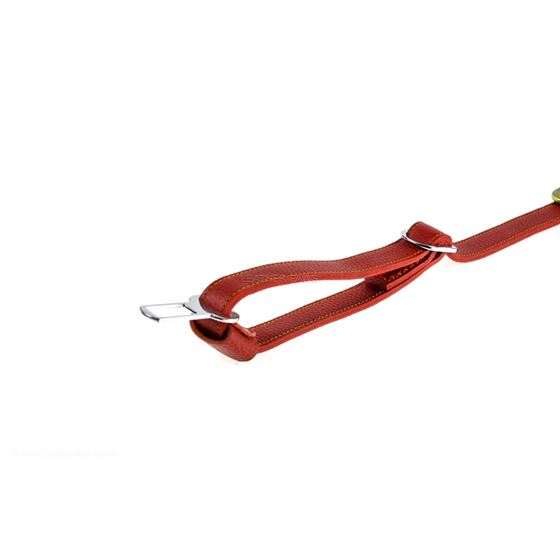 Red Travel Leather Leash 2