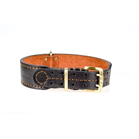 Leather Paws Monster III Leather Dog Collar Front