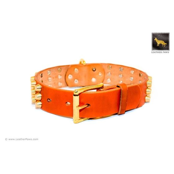 Gladiator V Cognac Studded Leather Collar 2