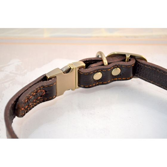 Quick Release Leather Collar 2