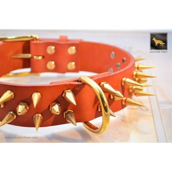 Gladiator IV Spiked Leather Collar 2