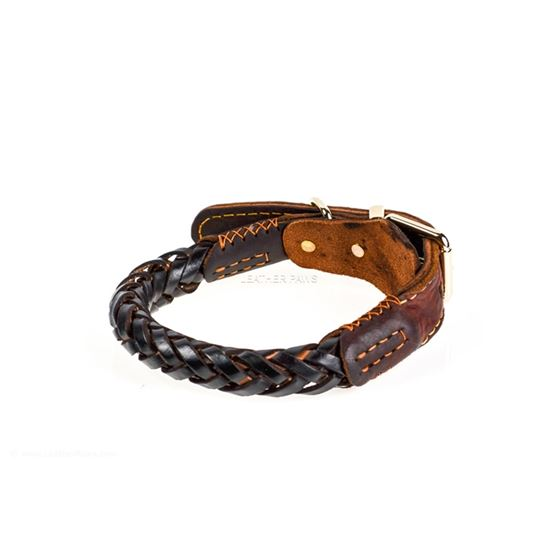 Thick Braid Leather Collar Back