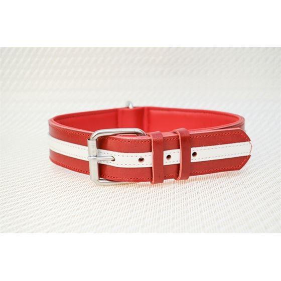 LPNY USA Pride Leather Dog Collar4