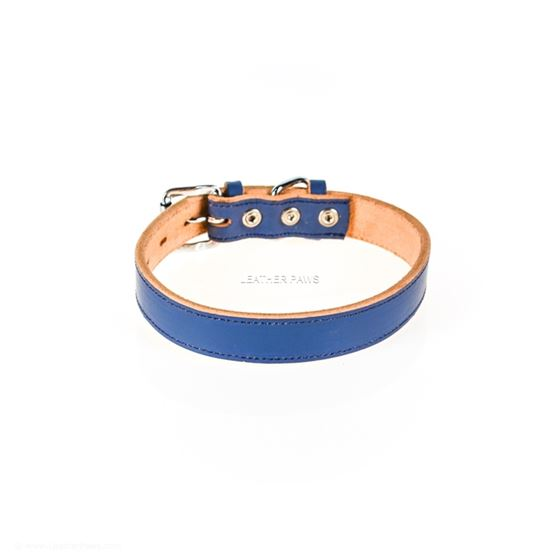 Leather Paws Ocean Dog Leather collar back