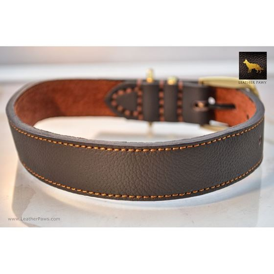 Horizon Leather Collar