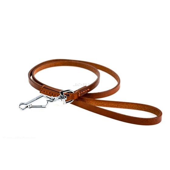 Quick Release Leather Leash Close up