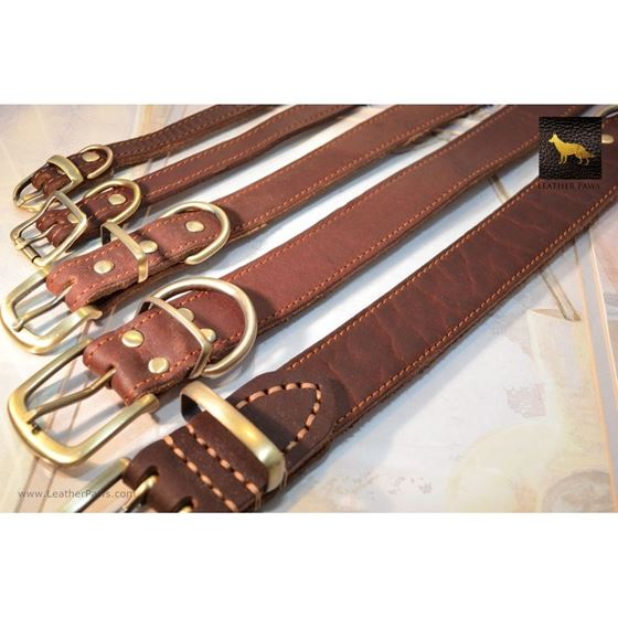 Rusty Red Oak Leather Collar 4