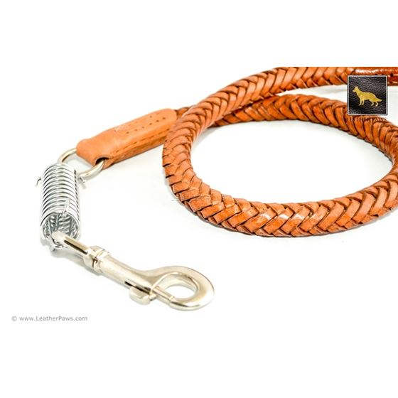 Statement II Brown Braided Leather Leash 2