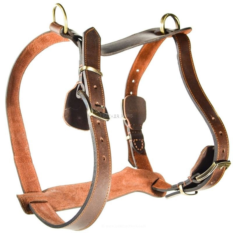 Rusty Red Oak Large Harness