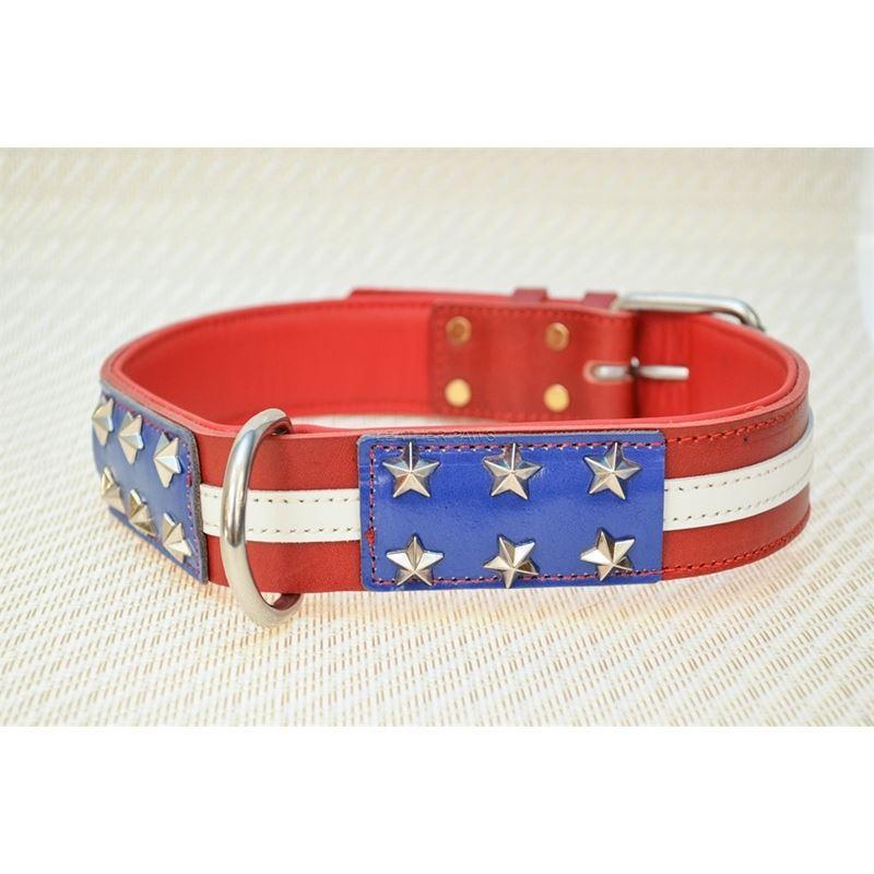 LPNY USA Pride Leather Dog Collar